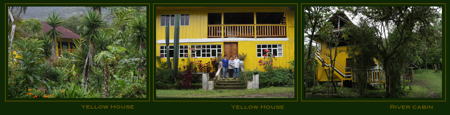 Yellow house rooms